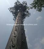 Lowes гальванизировало закамуфлированную башню пальмы для сообщения