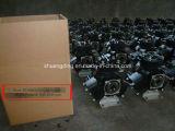 50 litros de bomba de diafragma agricultural