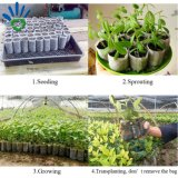 Pp.-nichtgewebte Blumen-Pflanzenwachsender Beutel
