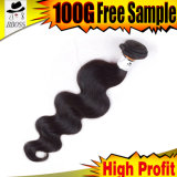 Deux tons en douceur les cheveux brésiliens Cheveux humains non traités
