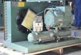 Unità di condensazione della strumentazione della cella frigorifera di memoria dei pesci freschi