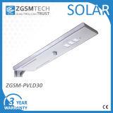 30W Intelligent Motion Sensor Solaire Jardin Luminaire avec Panneau Solaire Tout en Un
