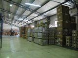 Chennai USD0/Cbm Zero Freight에 자유로운 Shipping 중국