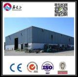 Высокое качество индивидуального стали структуры склада (BYSS003)