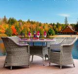 도매 중국 제조 싼 PE 등나무 알루미늄 안뜰 정원 의자