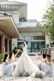 方法服のレースライン夕方のウェディングドレスの花嫁衣装