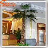 La palma artificiale di autunno della vetroresina della decorazione del mercato pianta l'albero
