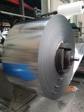 430 acciaio inossidabile Coils/2b-Cold laminato
