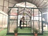 Fabricado na China Wholesales Estufa de policarbonato (RDGU0808H)