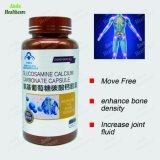 Supplément à la nutrition de santé naturel Augmenter la densité osseuse de la Glucosamine Capsule de carbonate de calcium, améliore le réparer les articulations (capsule 0.4G/*60)