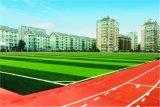 Het milieuvriendelijke Kunstmatige Gras van het Gebied van het Voetbal van de Voetbal van de Speelplaats Mini (M50)