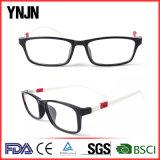 Brillen des China-heißer Verkaufs-neuer Entwurfs-kundenspezifische Firmenzeichen-Tr90 (YJ-G52012)