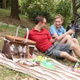 De zachte 600d Mand van de Picknick van het Aluminium van Oxford Waterdichte Vouwbare