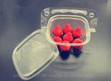Bloco de bolha transparente da salada creativa descartável da fruta do bolo da cesta de mão