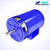 Brushless DC Generator (alternatori) usate per Electromobile