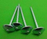 De hete Verkoop Gegalvaniseerde Spijkers van het Dakwerk van de Paraplu Hoofd (Fabriek)