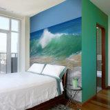 Impresión barata de los murales de la pared de la alta calidad del precio para la decoración