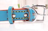 애완 동물 제품 개 고양이 다채로운 형식 고리 (C002)
