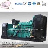 250kw 300 kw 400 kw 500 kw 550kw générateur de gaz de méthane de biogaz