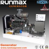 80kVA 경제 디젤 엔진 발전기 세트 (Ricardo 시리즈) (HF64R1)