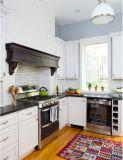 Amerikanische Art-moderne Küche-Entwürfe