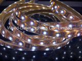 세륨 RoHS 유연한 테이프 빛 2 년 보장 IP68 반달 SMD 3825 LED