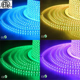 120V / ETL / UL Aprovado 5050 RGB Cor Mudando Flexível LED Strip Light