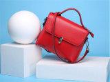 Sacchetto di spalla delle borse delle signore di modo