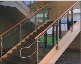 Acero inoxidable de interior adornado con la maneta de cristal de la escalera del estilo