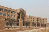 Haohan ha personalizzato la rete fissa industriale residenziale decorativa elegante 92 di alta qualità