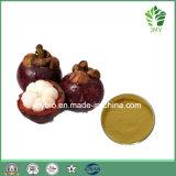 알파 Mangostin 결핵을 취급하는 20%-90%의 망고스틴 추출 Polyphenols 30%