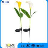 Allumer la lumière solaire de pieu de Syle de fleur de zantedeschia pour le jardin ou le patio