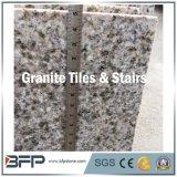 Grijs Bruin Geel Wit Zwart Rood Graniet voor Countertop van de Plak van de Tegel