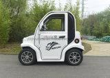 Automobile sveglia della mini automobile elettrica di Fs-1 60V 100A