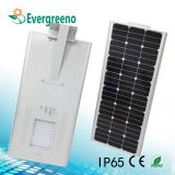 Integrated / All in One Solar LED Garden Street Light com controle remoto