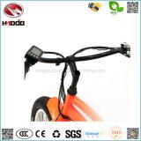 Fetter Gummireifen-Muse-elektrisches Fahrrad-Leistungshebel-Fahrrad LCD-Bildschirmanzeige E-Fahrrad der Strand-Art-500W mit Pedal