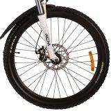 36V 10.4ah 500W 모터 산 전기 자전거 E 자전거
