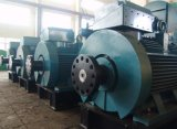 Generador de la fuente para la industria de la mina/la planta del cemento