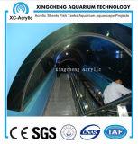 Proyecto de acrílico transparente modificado para requisitos particulares del acuario de la estructura del surtidor del acuario
