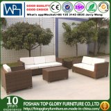 Muebles modernos del jardín de los muebles del patio del sofá de la rota (TG-JW14)