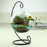 Botella de cristal colgante redonda clara del florero para la decoración de la boda