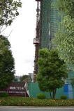 構築のTopkitのチェーンタワークレーンの機械装置
