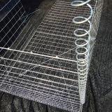 직류 전기를 통한 용접된 유형 Gabion 상자의 호주 공급자