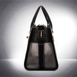 Qualitätskönigliche Luxuxhundeträger-Leder-Haustier-Handtaschen
