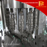 heiße niedriger Preis-Flaschen-Saft-Füllmaschine des Verkaufs-5000bph