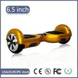 Le CE a reconnu le scooter électrique d'équilibre d'individu de 2 roues