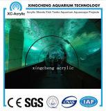 Proyecto de acrílico del parque del mar del acuario marina grande