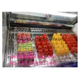 Novo Estilo Popsicle Xsflg freezer para venda