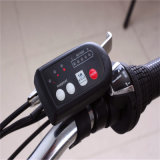 Qualität preiswertes 250W elektrisches Fahrrad faltbares Ebike Fahrrad faltend