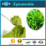 Health Supplment CAS를 위한 제암성 Natural Extracts Antioxidants L-Epicatechin: 490-46-0
